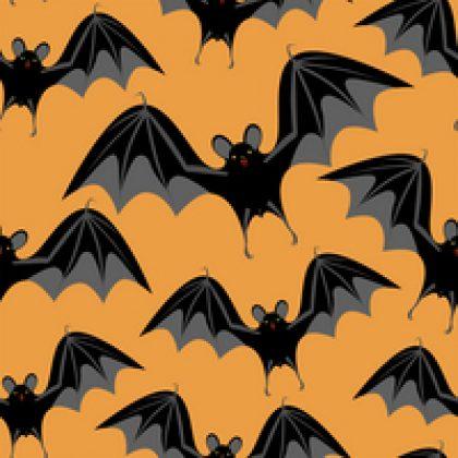 שיטות להרחקת עטלפים עשה זאת בעצמך